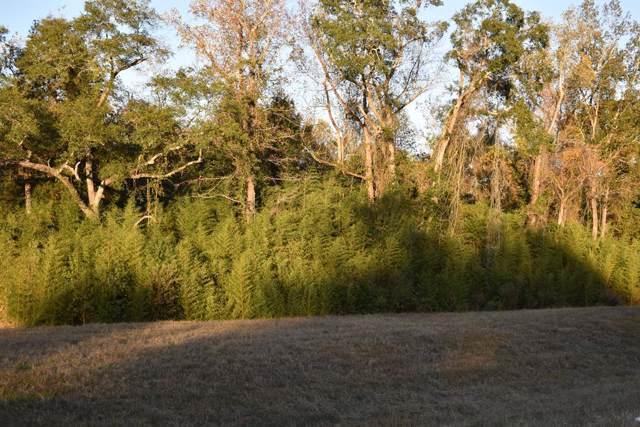 0 Highway 203, Elba, AL 36323 (MLS #176012) :: Team Linda Simmons Real Estate