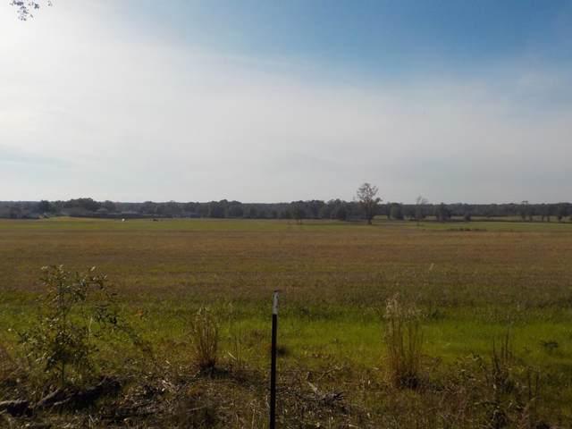 Lot  11, 1.5+-Ac, Reardon Rd, Dothan, AL 36301 (MLS #176074) :: Team Linda Simmons Real Estate