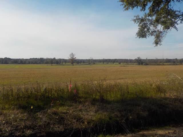 Lot  10, 1.5+-Ac, Reardon Rd, Dothan, AL 36301 (MLS #176075) :: Team Linda Simmons Real Estate