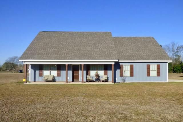 2346 County Rd. 13, Headland, AL 36345 (MLS #176154) :: Team Linda Simmons Real Estate