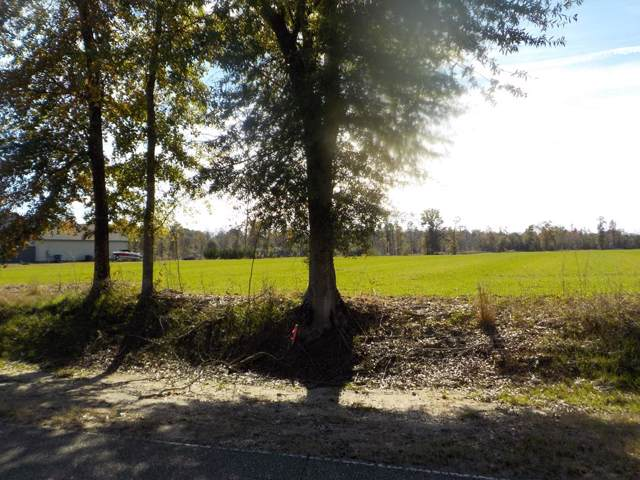 Lot 3, 10+-Ac Skipper Rd, Dothan, AL 36301 (MLS #176164) :: LocAL Realty