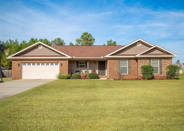 262 County Road, Enterprise, AL 36330 (MLS #176228) :: Team Linda Simmons Real Estate