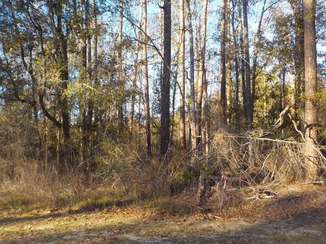 1.2+-ac Pine St, Cottonwood, AL 36320 (MLS #176301) :: Team Linda Simmons Real Estate