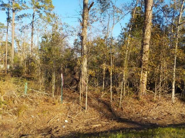 2.5+-ac Cottonwood Rd, Cottonwood, AL 36320 (MLS #176311) :: Team Linda Simmons Real Estate