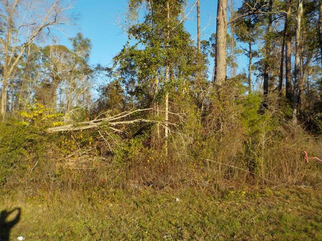 .7 +-ac Cottonwood Rd, Cottonwood, AL 36320 (MLS #176318) :: Team Linda Simmons Real Estate