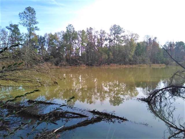 0 Ed Tolar Road, Pansey, AL 36370 (MLS #176322) :: Team Linda Simmons Real Estate