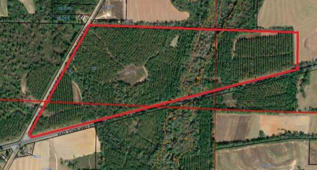 0 Highway 52, Columbia, AL 36319 (MLS #176331) :: Team Linda Simmons Real Estate