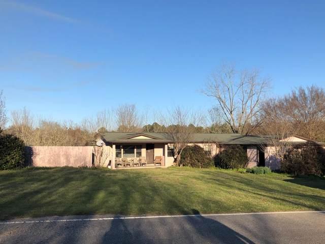 3564 Alford Road, Samson, AL 36477 (MLS #176440) :: Team Linda Simmons Real Estate