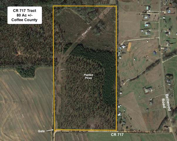 00 County Road 717, Enterprise, AL 36330 (MLS #176456) :: Team Linda Simmons Real Estate