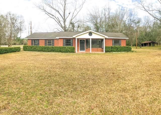 1429 Cecil Varnum Road, Cottonwood, AL 36301 (MLS #176512) :: Team Linda Simmons Real Estate
