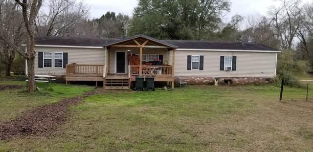 133 Goody Lane, Midland City, AL 36350 (MLS #176583) :: Team Linda Simmons Real Estate
