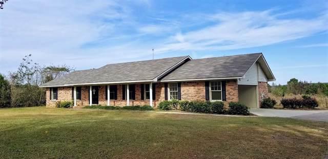 1818 County Road 5, Ozark, AL 36360 (MLS #176622) :: Team Linda Simmons Real Estate