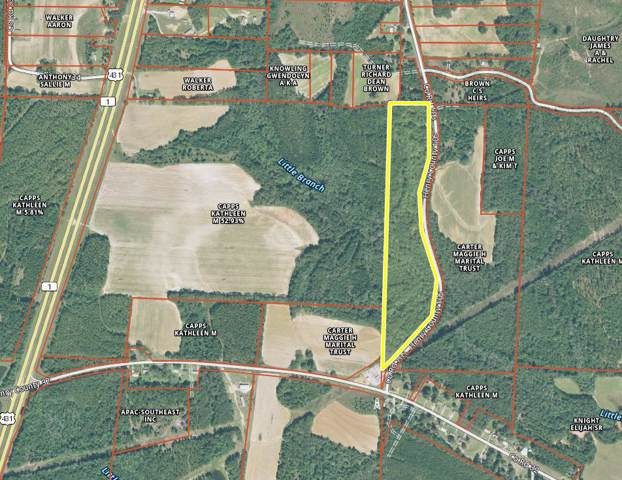 1 County Road 105, Headland, AL 36345 (MLS #176720) :: Team Linda Simmons Real Estate