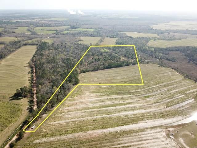 25 Acres Rufus White Rd, Ashford, AL 36312 (MLS #177144) :: Team Linda Simmons Real Estate