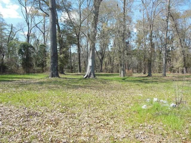 Lot 5 County Line Road, Georgetown, GA 39854 (MLS #177165) :: Team Linda Simmons Real Estate