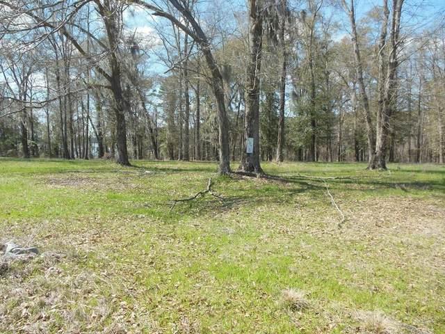 Lot 6 County Line Road, Georgetown, GA 39854 (MLS #177166) :: Team Linda Simmons Real Estate