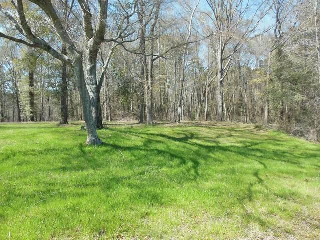 Lot 7 County Line Road, Georgetown, GA 39854 (MLS #177168) :: Team Linda Simmons Real Estate