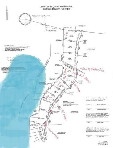 Lot 10 County Line Road, Georgetown, GA 39854 (MLS #177169) :: Team Linda Simmons Real Estate