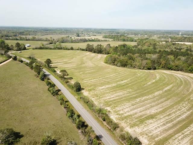 5.6 Acre North County Road 33    5.6 Acres Lot 4, Ashford, AL 36312 (MLS #177231) :: Team Linda Simmons Real Estate