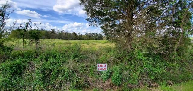 6.4 Acre North County Road 33    6.4 Acres Lot 3, Ashford, AL 36312 (MLS #177233) :: Team Linda Simmons Real Estate