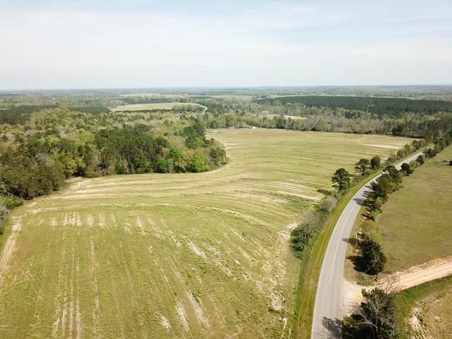 7 Acres North County Road 33    7 Acres Lot 2, Ashford, AL 36312 (MLS #177234) :: Team Linda Simmons Real Estate