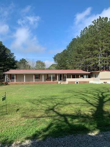 79 Fields Terrace Rd, Pinckard, AL 36371 (MLS #177270) :: Team Linda Simmons Real Estate