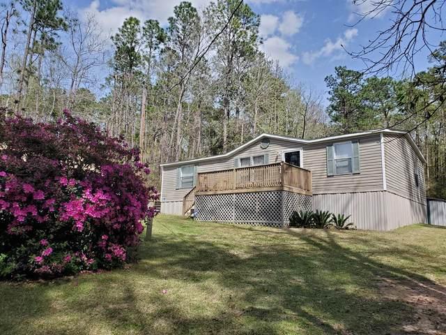569 Singer Lane, Abbeville, AL 36310 (MLS #177275) :: Team Linda Simmons Real Estate