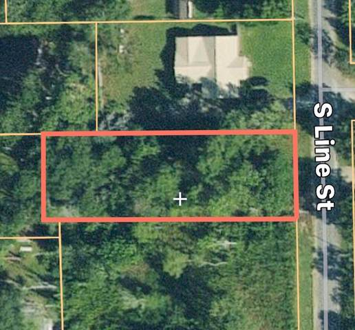 0 S Line Street, Samson, AL 36477 (MLS #177418) :: Team Linda Simmons Real Estate
