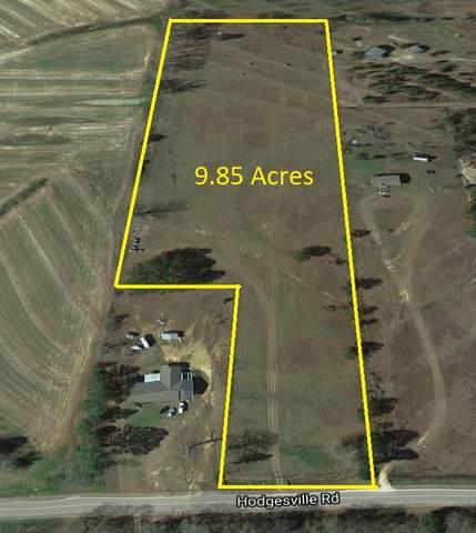 6500 Hodgesville Road, Dothan, AL 36301 (MLS #177453) :: Team Linda Simmons Real Estate