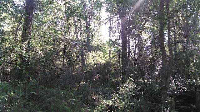 880 Mcardle Road, Dothan, AL 36303 (MLS #177550) :: Team Linda Simmons Real Estate