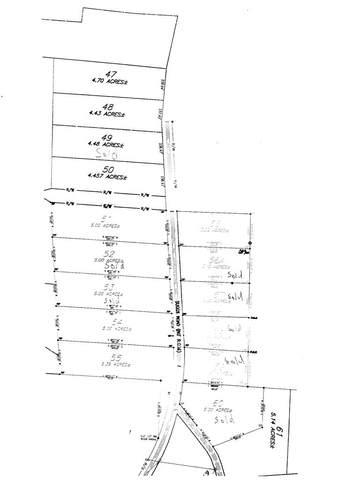 0 Co. Rd. 39 / Suggs, Headland, AL 36345 (MLS #177687) :: LocAL Realty