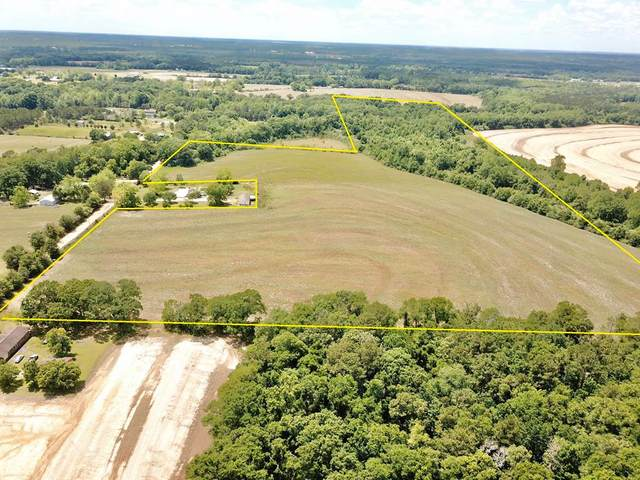 57 Acres Scott Road, Malvern, AL 36375 (MLS #177702) :: Team Linda Simmons Real Estate
