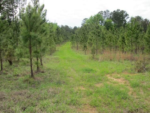 XXX Cr-207, Eufaula, AL 36027 (MLS #177785) :: Team Linda Simmons Real Estate