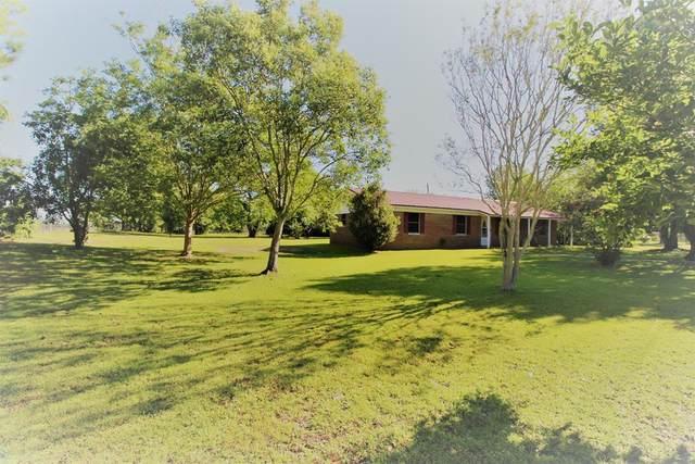121 Rossi Cir., Dothan, AL 36305 (MLS #177965) :: Team Linda Simmons Real Estate