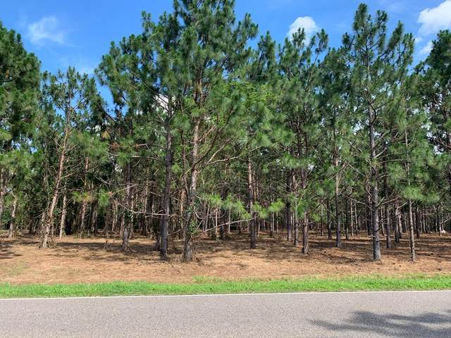 0 N Co Rd 9, Hartford, AL 36344 (MLS #178057) :: LocAL Realty