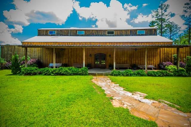 10135 Dale Cty Rd 59, Midland City, AL 36350 (MLS #178065) :: Team Linda Simmons Real Estate