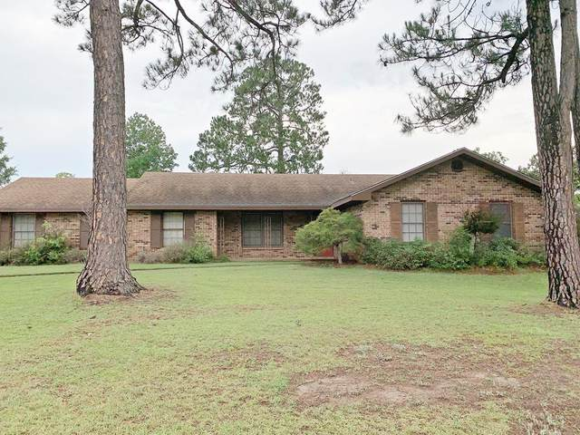 1364 Honeysuckle, Dothan, AL 36305 (MLS #178303) :: Team Linda Simmons Real Estate