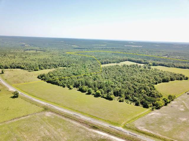 169 Acres Co Rd 101, Abbeville, AL 36310 (MLS #178315) :: Team Linda Simmons Real Estate