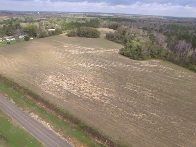 000 Grove Street, Cottonwood, AL 36320 (MLS #178395) :: Team Linda Simmons Real Estate