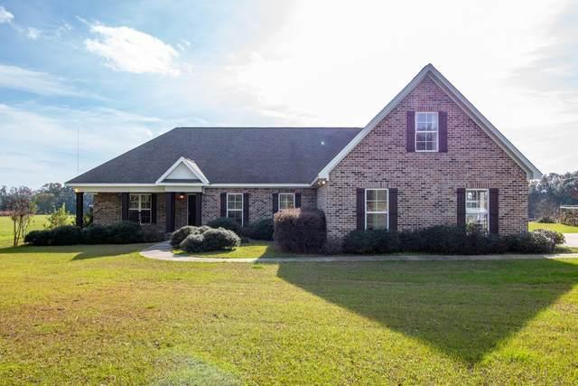 1232 Main Street, Ashford, AL 36312 (MLS #178402) :: Team Linda Simmons Real Estate