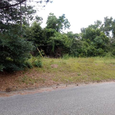 0 State Ave, Dothan, AL 36303 (MLS #178447) :: Team Linda Simmons Real Estate