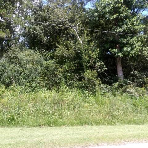 0 S. Bay St., Samson, AL 36447 (MLS #178569) :: Team Linda Simmons Real Estate
