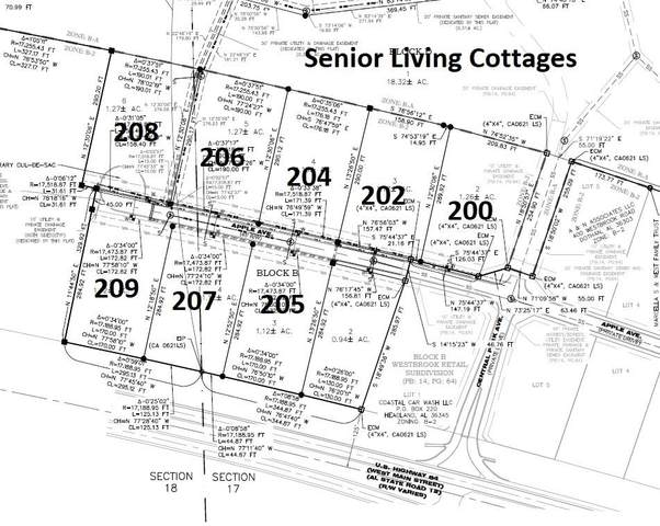 206 Apple Avenue, Dothan, AL 36303 (MLS #178713) :: Team Linda Simmons Real Estate