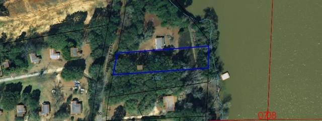 0 Old Abbeville Road, Eufaula, AL 36027 (MLS #178754) :: Team Linda Simmons Real Estate