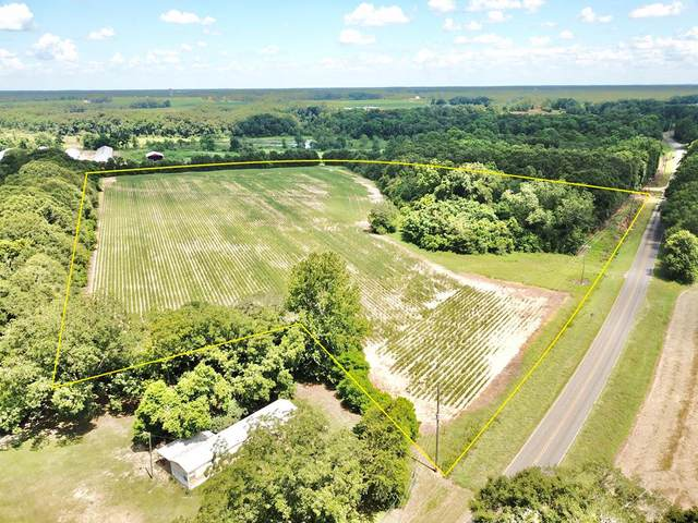 19 Acres County Road 21, Geneva, AL 36340 (MLS #178766) :: Team Linda Simmons Real Estate