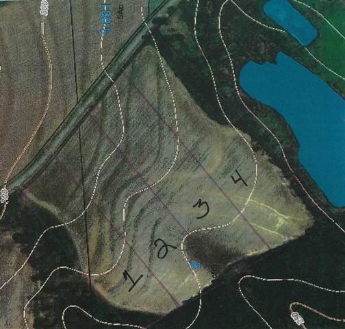Lot 1 County Rd 9, Wicksburg, AL 36352 (MLS #178858) :: Team Linda Simmons Real Estate