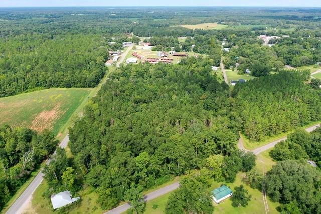 9.45+-ac Hwy 53/Granger St/ Wood St, Cottonwood, AL 36320 (MLS #178923) :: Team Linda Simmons Real Estate