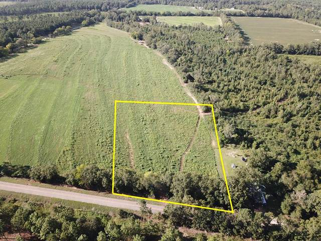 3 Acres Bill Yance Rd Lot 10, Columbia, AL 36319 (MLS #179086) :: Team Linda Simmons Real Estate