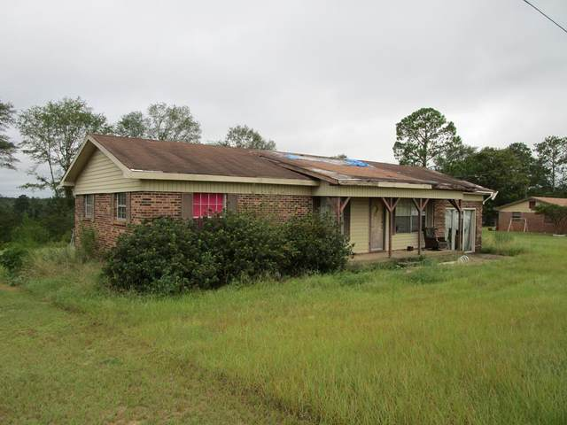 109 Merritt St, Abbeville, AL 36310 (MLS #179217) :: Team Linda Simmons Real Estate