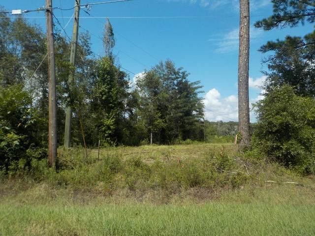 8+/- Hodgesville Rd, Dothan, AL 36301 (MLS #179222) :: Team Linda Simmons Real Estate